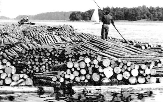Timmerflotta bogseras genom Pellinge sund ca 1950.