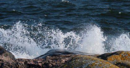 Vågor som slår mot klippor i Pellinge. Foto Nina Sarnow